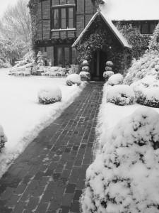 winter 10 075