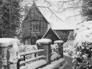 winter 10 081